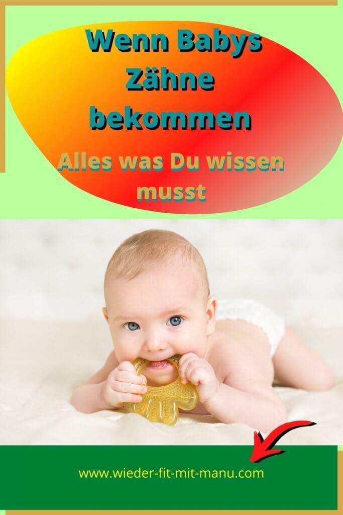 Wenn Babys Zähne bekommen - Hier findest Du Infos, die Deinem Baby beim Zahnen helfen. Bernsteinkette, Veilchenwurzel, Belladonna etc.